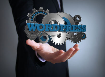 Domain Webspace WordPress