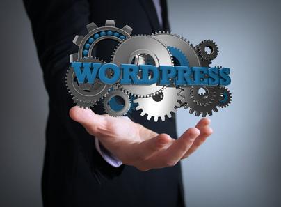 Wordpress Einrichten