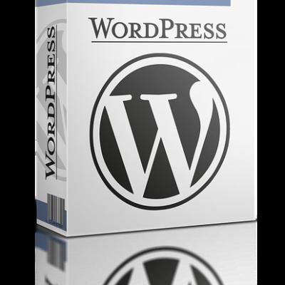 WordPress Hosting Vergleich 2021 – schnell & preiswert Top-Seiten erstellen
